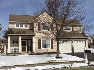92 Connelly Ave, Mount Olive Twp., NJ 07828 (MLS #3372964) :: The Dekanski Home Selling Team