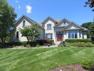 4 Fox Run, Green Twp., NJ 07821 (MLS #3373118) :: The Dekanski Home Selling Team
