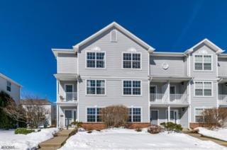 401 Mercer Ct, Independence Twp., NJ 07840 (MLS #3373124) :: The Dekanski Home Selling Team