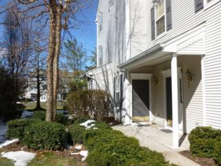 276 Riverwalk Way, Clifton City, NJ 07014 (MLS #3373142) :: The Dekanski Home Selling Team