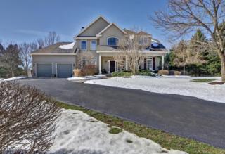 11 La Costa Ct, Montgomery Twp., NJ 08558 (MLS #3373159) :: The Dekanski Home Selling Team