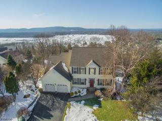 53 Canada Goose Dr, Allamuchy Twp., NJ 07840 (MLS #3373313) :: The Dekanski Home Selling Team
