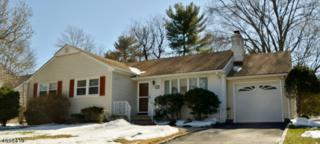 317 Judges Ln, North Plainfield Boro, NJ 07063 (MLS #3373318) :: The Dekanski Home Selling Team