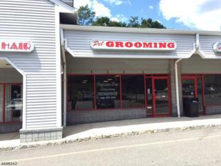 915 County Road 517, Independence Twp., NJ 07840 (MLS #3373334) :: The Dekanski Home Selling Team