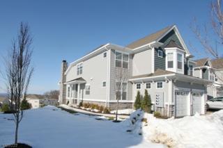 25 Blazingstar Way, Allamuchy Twp., NJ 07840 (MLS #3373352) :: The Dekanski Home Selling Team