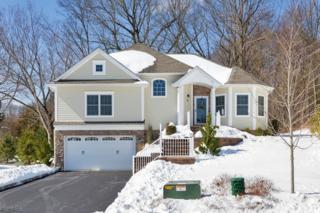 20 Linda Ct, Montville Twp., NJ 07045 (MLS #3373366) :: The Dekanski Home Selling Team