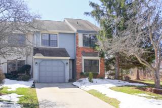 115 Eastwick Ct, Hillsborough Twp., NJ 08844 (MLS #3373373) :: The Dekanski Home Selling Team