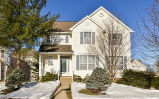 198 Winding Hill Dr, Mount Olive Twp., NJ 07840 (MLS #3373434) :: The Dekanski Home Selling Team