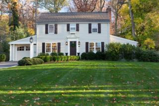 253 Washington Ave, Chatham Boro, NJ 07928 (MLS #3373467) :: The Dekanski Home Selling Team