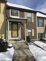 94 Wood Duck Ct, Allamuchy Twp., NJ 07840 (MLS #3373481) :: The Dekanski Home Selling Team