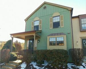 1 Wood Duck Ct, Allamuchy Twp., NJ 07840 (MLS #3373502) :: The Dekanski Home Selling Team