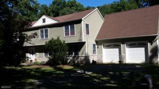 38 Legion Rd, Jefferson Twp., NJ 07438 (MLS #3373704) :: The Dekanski Home Selling Team