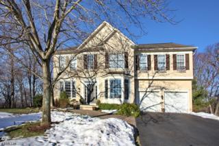 38 Revere Dr, Bedminster Twp., NJ 07921 (MLS #3373822) :: The Dekanski Home Selling Team