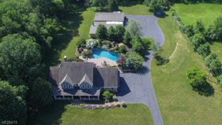 216 Parker Rd, Washington Twp., NJ 07853 (MLS #3373886) :: The Dekanski Home Selling Team
