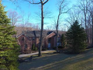 5 Angelo Dr, Sparta Twp., NJ 07871 (MLS #3374087) :: The Dekanski Home Selling Team