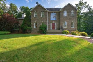 4 Lindsay Ln, Sparta Twp., NJ 07871 (MLS #3374326) :: The Dekanski Home Selling Team