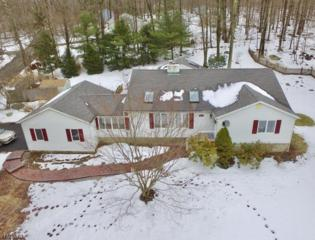 1 Laurel Dr, Hardyston Twp., NJ 07460 (MLS #3374359) :: The Dekanski Home Selling Team