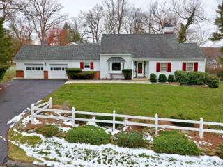 28 Island Trl, Sparta Twp., NJ 07871 (MLS #3374436) :: The Dekanski Home Selling Team
