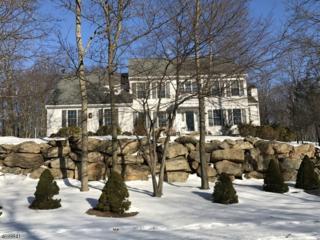 13 Mill Creek Rd, Sparta Twp., NJ 07871 (MLS #3374586) :: The Dekanski Home Selling Team