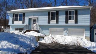 26 Alpine Rd, Wantage Twp., NJ 07461 (MLS #3374693) :: The Dekanski Home Selling Team