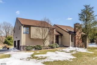 461 Pittstown Rd, Franklin Twp., NJ 08867 (MLS #3374702) :: The Dekanski Home Selling Team