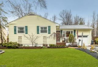 389 Midway Ave, Fanwood Boro, NJ 07023 (MLS #3375586) :: The Dekanski Home Selling Team