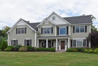2 Perin Pl, Roxbury Twp., NJ 07876 (MLS #3376141) :: The Dekanski Home Selling Team