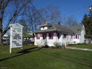3025 Route 27, Franklin Twp., NJ 08823 (MLS #3377874) :: The Dekanski Home Selling Team