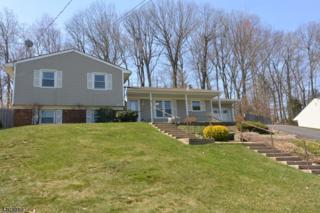7 Doreen Ct, Rockaway Twp., NJ 07866 (MLS #3378468) :: The Dekanski Home Selling Team