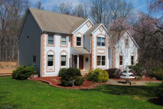 38 Wilkeshire Blvd, Randolph Twp., NJ 07869 (MLS #3379814) :: The Dekanski Home Selling Team
