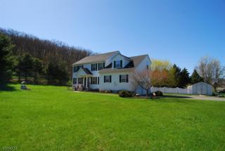 46 David Dr, Frankford Twp., NJ 07822 (MLS #3380643) :: The Dekanski Home Selling Team