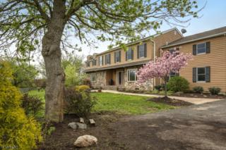 48 42nd St, Readington Twp., NJ 08889 (MLS #3383285) :: The Dekanski Home Selling Team