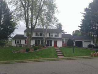 61 Queens Rd, Rockaway Twp., NJ 07866 (MLS #3384564) :: The Dekanski Home Selling Team