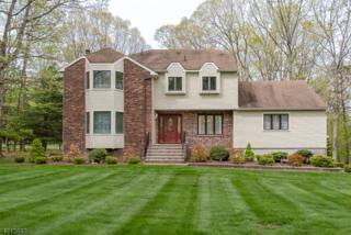 11 Schindler Dr, Roxbury Twp., NJ 07876 (MLS #3387214) :: The Dekanski Home Selling Team