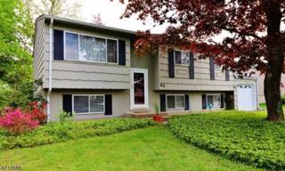 62 St Mary Dr, Roxbury Twp., NJ 07876 (MLS #3387272) :: The Dekanski Home Selling Team