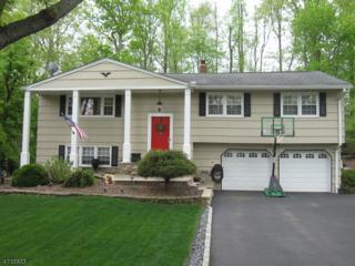 29 Queens Rd, Rockaway Twp., NJ 07866 (MLS #3387353) :: The Dekanski Home Selling Team