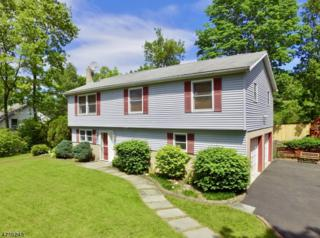 196 S Maryland Ave, Jefferson Twp., NJ 07849 (MLS #3389990) :: The Dekanski Home Selling Team