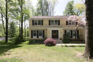259 Gates Ave, Long Hill Twp., NJ 07933 (MLS #3390009) :: The Dekanski Home Selling Team