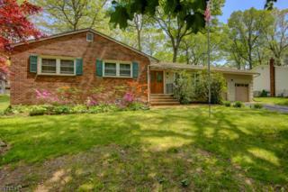 20 Kentwood Rd, Roxbury Twp., NJ 07876 (MLS #3390272) :: The Dekanski Home Selling Team