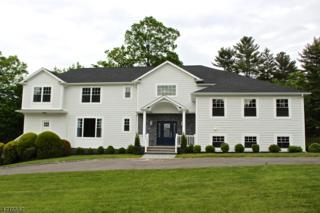 17 Puritan Road, Millburn Twp., NJ 07078 (MLS #3390827) :: The Sue Adler Team
