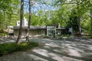 125 Deer Park Rd, Allamuchy Twp., NJ 07840 (MLS #3225351) :: The Dekanski Home Selling Team