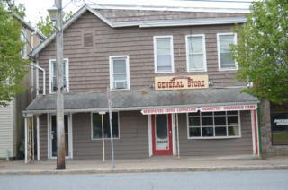 33 Wall St, Oxford Twp., NJ 07863 (MLS #3229324) :: The Dekanski Home Selling Team