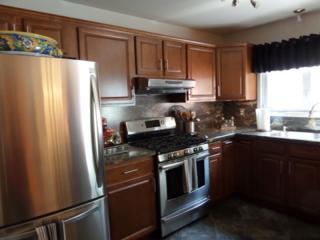 37 Fox Tail Ln, Hardyston Twp., NJ 07419 (MLS #3249996) :: The Dekanski Home Selling Team