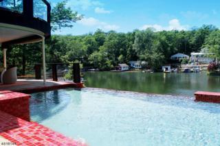 355 Maxim Drive, Hopatcong Boro, NJ 07843 (MLS #3299164) :: The Dekanski Home Selling Team