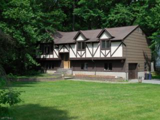 208 Lake Dr, Byram Twp., NJ 07874 (MLS #3301754) :: The Dekanski Home Selling Team