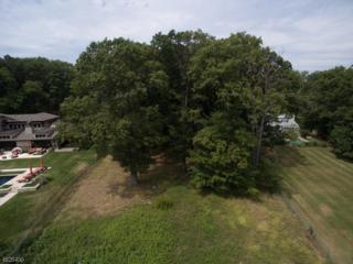 6 Deer Run, Watchung Boro, NJ 07069 (MLS #3307372) :: The Dekanski Home Selling Team