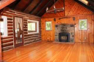 48 Lakeside Ave, Hardyston Twp., NJ 07460 (MLS #3318093) :: The Dekanski Home Selling Team