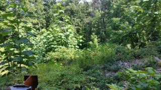 21 Rockledge Rd, Montville Twp., NJ 07045 (MLS #3322457) :: The Dekanski Home Selling Team
