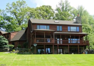 9 Hillcrest Dr, Liberty Twp., NJ 07838 (MLS #3325750) :: The Dekanski Home Selling Team