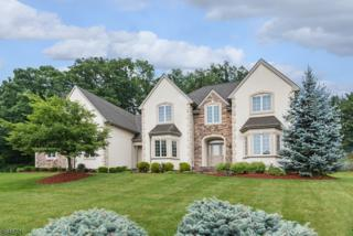 19 Exeter Ln, Hardyston Twp., NJ 07419 (MLS #3325991) :: The Dekanski Home Selling Team
